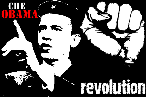 delegation authority seperation powers uh fuggetabouditt bow obama bloody revolution