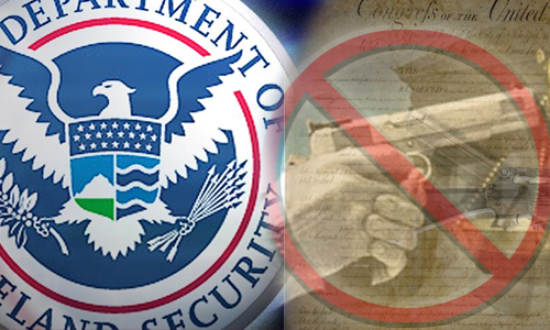 DHS-gunban