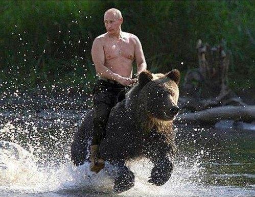 Putin-bearRider